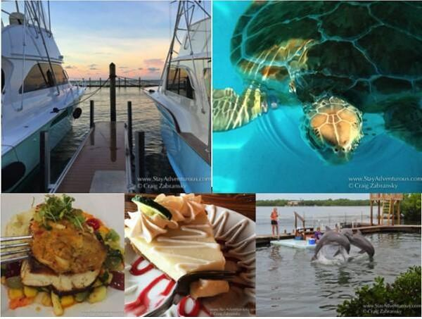 floridakeys-restaurants-turtles-dolphins