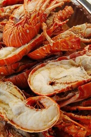 floridakeys-seafood