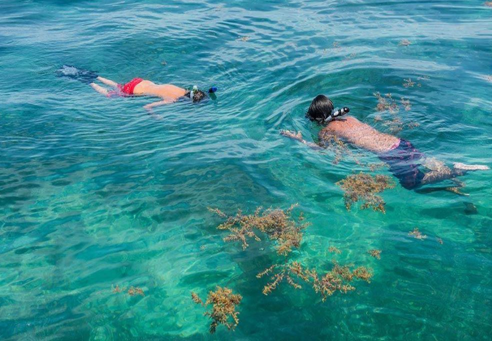 florida-keys-kids-snorkel